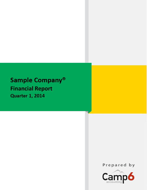 SAMPLE REPORT  Company Financial Analysis Report Sample