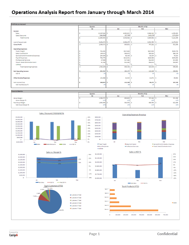 company financial analysis report sample